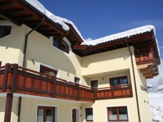 Bergviewhaus apartments - Tirol vacation rentals
