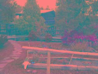 Log House At the End of the Road in SW Colorado - Mancos vacation rentals