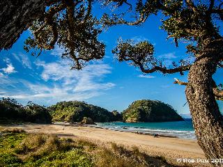 Earth Sea Gardens - Tutukaka vacation rentals