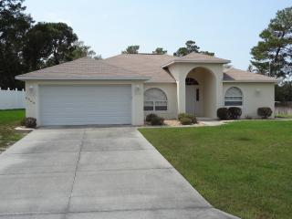 Spring Hill Vacation Villa - Spring Hill vacation rentals