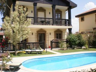 Calis Houses villa apt. Calis, with privacy - Aegean Region vacation rentals