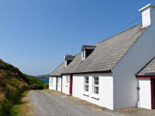 SHARK 1, wonderful sea views, open fire, en-suite bathroom, nearSkibbereen, Ref. 27333 - Skibbereen vacation rentals
