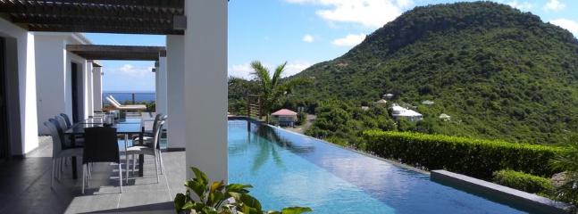 Valley at Vitet, St. Barth - Ocean View, Contemporary Style, Pool - Image 1 - Vitet - rentals