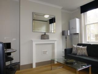 Stylish 2 bed apt in the heart of the City - London vacation rentals