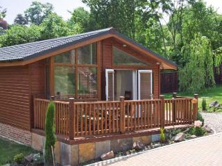 OAK LODGE ground floor, luxury lodge, private terrace in Newent Ref 27868 - Gloucestershire vacation rentals