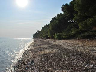 Metamorfosi, Sithonia, Beachfront Apartment, Wonderful View - Sithonia vacation rentals