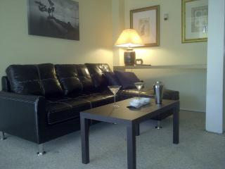 Seymour Garden Level Suite - Houston vacation rentals