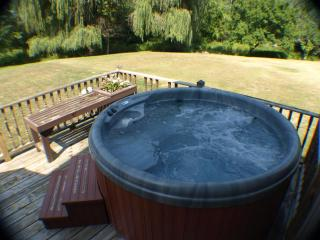 aqua Chalet 8/17-8/21 $225/nt HOT TUB FIRE PIT - Southwest Michigan vacation rentals