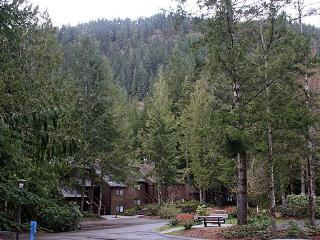 Snowater Condo #75 -2 Story Deluxe Condo - Sleeps 4 - Close to Community Amenities! - Glacier vacation rentals