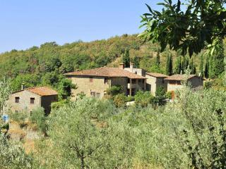 Farmhouse with pvt pool, terraces, stunning view - Loro Ciuffenna vacation rentals