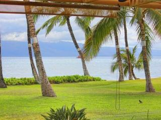 Puamana 226-3 Standard OF - Lahaina vacation rentals