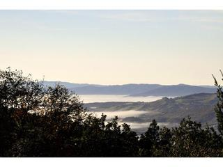 Valley of the Moon Views - Montagne Della Luna - Private 5+ Acre Estate - Glen Ellen - rentals