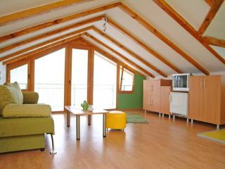 Yelow Apartmetn (Villa Ohrid) - Ohrid vacation rentals