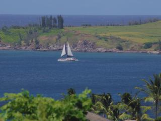 Ocean View + Discount Golf = Fabulous Vacation! - Kapalua vacation rentals