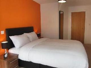 2 bed Premium Apt at City Centre - London vacation rentals
