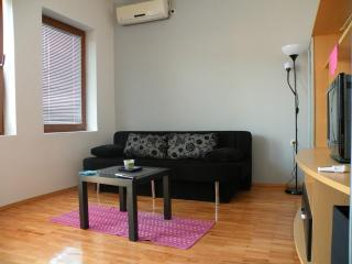 Black Apartment (Villa Ohrid) - Ohrid vacation rentals
