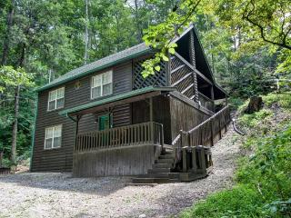 BEAR PAW - Sevierville vacation rentals