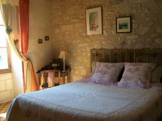 Au Moulin de la Croix bed and breafast - Charnizay vacation rentals