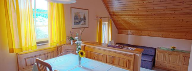 Apartment in the best Slovenian spa center - Podcetrtek vacation rentals