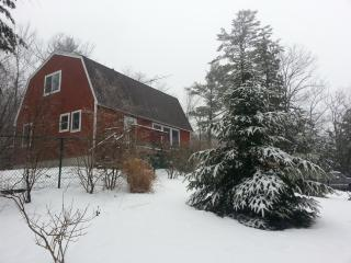 Winter in New Hampshire on a pond with cozy comforts - New Durham vacation rentals