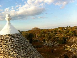 TRULLO SALICE - Ceglie Messapica vacation rentals