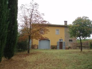 Holiday in Beautiful Vinci, Village of Leonardo - Vinci vacation rentals