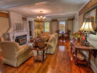 Elegant  Lake-View Manor home Sleep 20 Family Fun! - Cayuga Lake vacation rentals