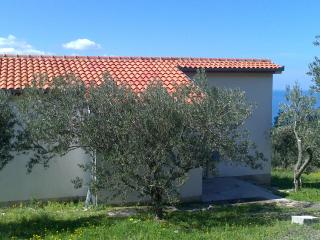 Villa Oliveta seaview & great sport possibility - Brela vacation rentals