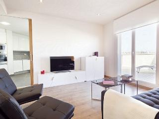 B236 LUXURY CITY TERRACE II - Barcelona vacation rentals
