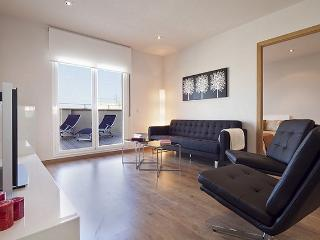 B422 LUXURY CITY TERRACE IV - Barcelona vacation rentals