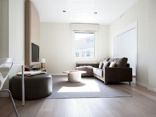 B343 LUXURY CITY APARTMENT II - Barcelona vacation rentals
