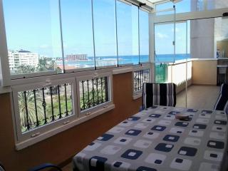 PENTHOUSE WITH INTERNET IN TORREVIEJA - Torrevieja vacation rentals