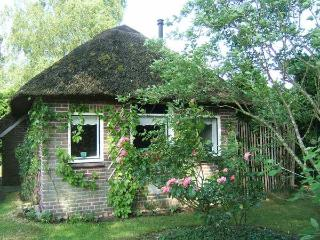 whitton house cottage - Drenthe vacation rentals