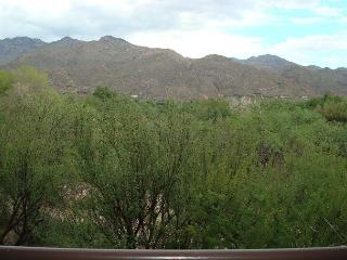 First Floor 2 Bedroom with Picture Perfect Mountain View - Tucson vacation rentals