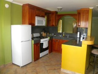 Fully Furnished Luxury Studio Apt in Belize City - Belize City vacation rentals