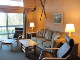 Base Camp 6 ~ RA6847 - Kirkwood vacation rentals