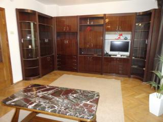 Arbat August - Moscow vacation rentals