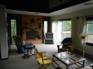 Escape to the mountains of Virginia - Basye vacation rentals