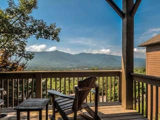 Lion's Peak - Black Mountain Vacation Rentals - Black Mountain vacation rentals