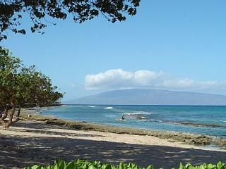 Hale Kai #102 - Your Home by the Sea in West Maui - Lahaina vacation rentals