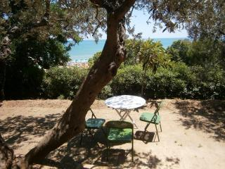 Historic Italian Beach House Villa - Abruzzo vacation rentals