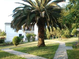 Small house in Halkidiki, Greece ! - Macedonia Region vacation rentals