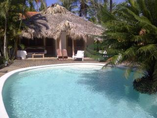 2 bdrms cottage+smaller one on other side of pool - Las Terrenas vacation rentals