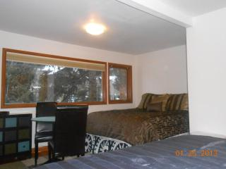 Deluxe Condo at Aspen Highlands - Aspen vacation rentals