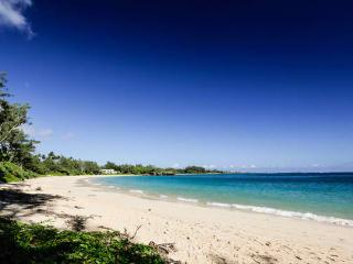 Beachside Getaway Estate-ADA Ramps, Close to Beach - Laie vacation rentals