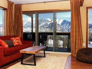 Ski In Ski Out, Stunning Summer CO Mountain Vistas - Durango vacation rentals