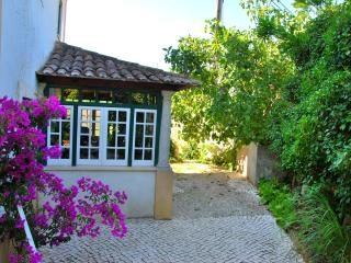 B&B Violet Room with Fireplace - Torres Vedras vacation rentals
