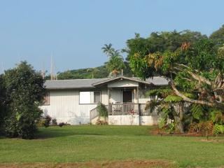 Your Hawaiian Home - Papaikou vacation rentals
