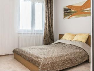 Lovely spacious apartment - Czech Republic vacation rentals