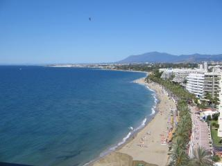Skol 913 Apartment Marbella - Marbella vacation rentals